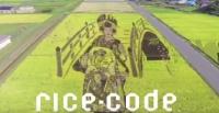 Rice Code