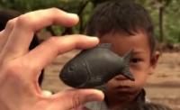 Lucky Iron Fish: Shape of Health