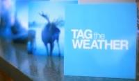 Gillette Venus Tag the Weather case study