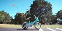 The Riderless Bike